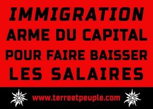 Immigration : arme du capital pour faire baisser les salaires