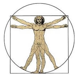 Homme Vitruve - Léonard de Vinci