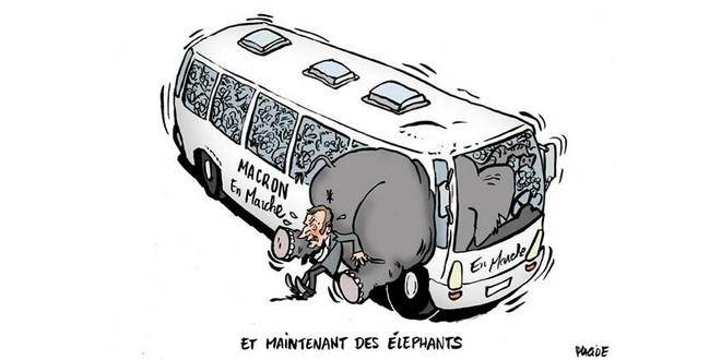 Emmanuel Macron éléphants Parti Socialiste