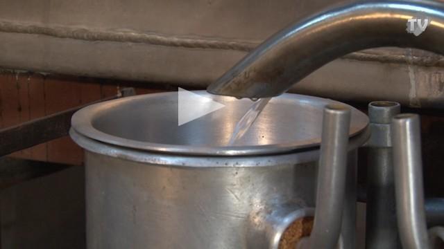 Distillation après cueillette fleur oranger