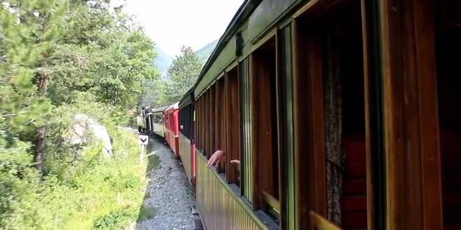 Train Pignes vapeur