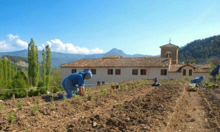 L'abbaye de Rosans: des bénédictines au cœur de la Provence