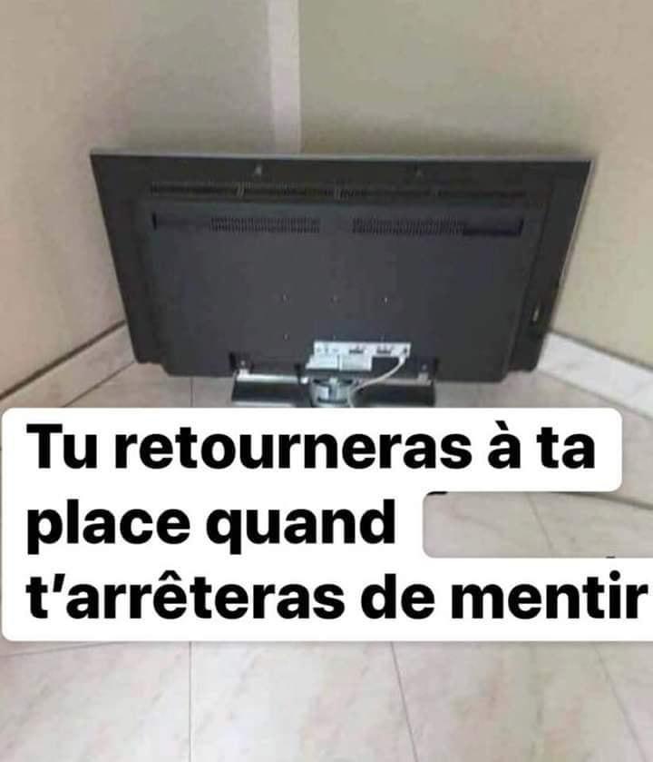 Télévision-mensonge