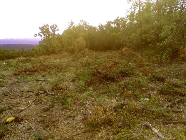 Forêt communale Tourrettes abattage ONF août 2019