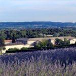 Monastère de Taulignan: des dominicaines et des produits bio