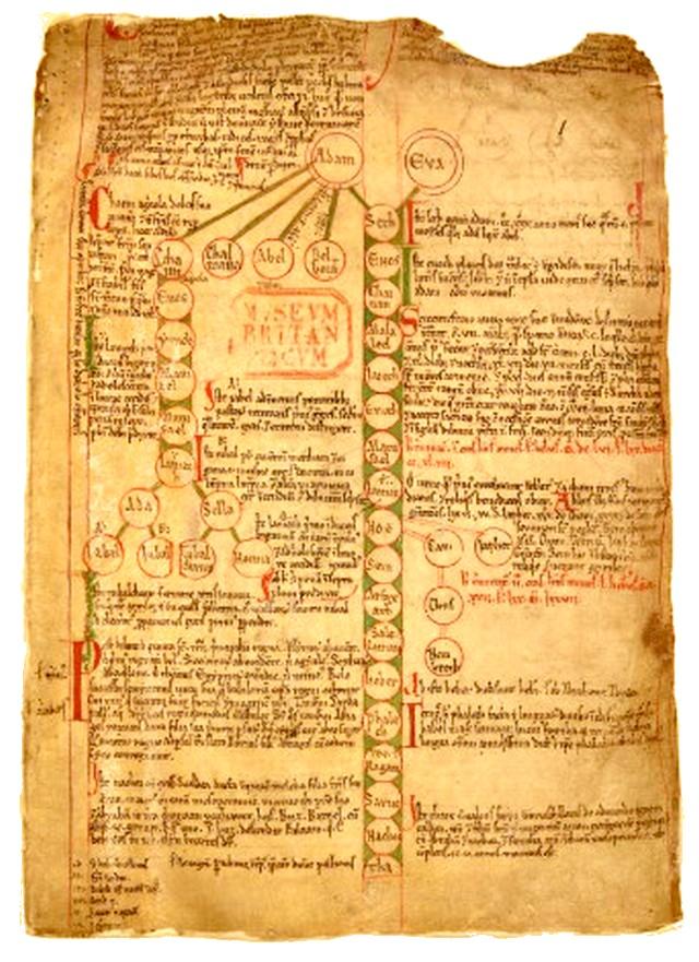 Traité phytothérapie British Museum