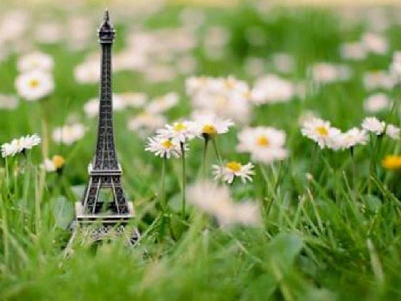 Tour Eiffel campagne