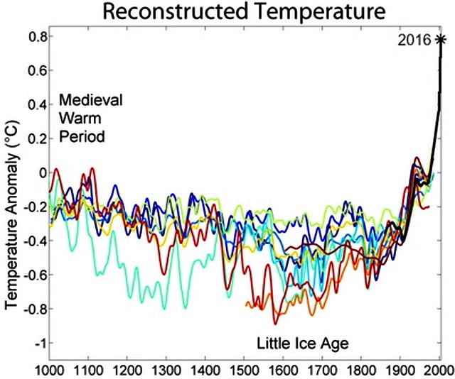 Climat courbe Mann crosse hockey