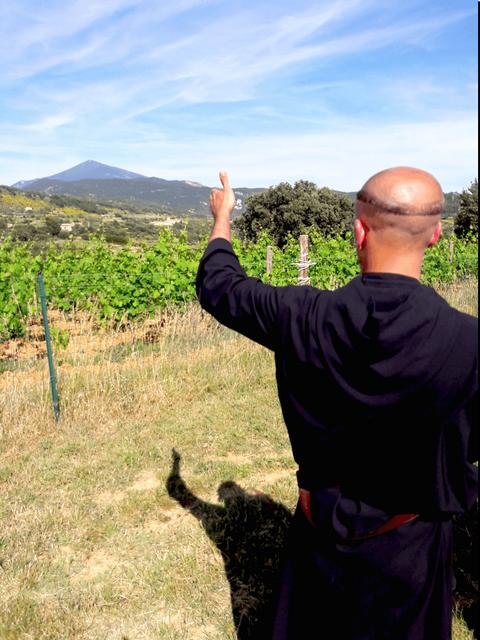 Un moine bénédictin au travail dans la vigne du Barroux