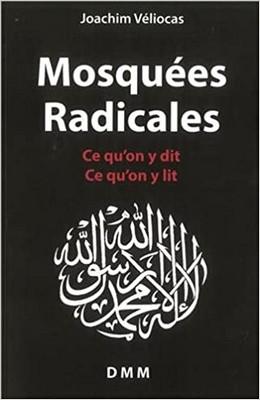 Joachim Véliocas - Mosquées radicales