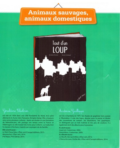 CP - Loup - confusion