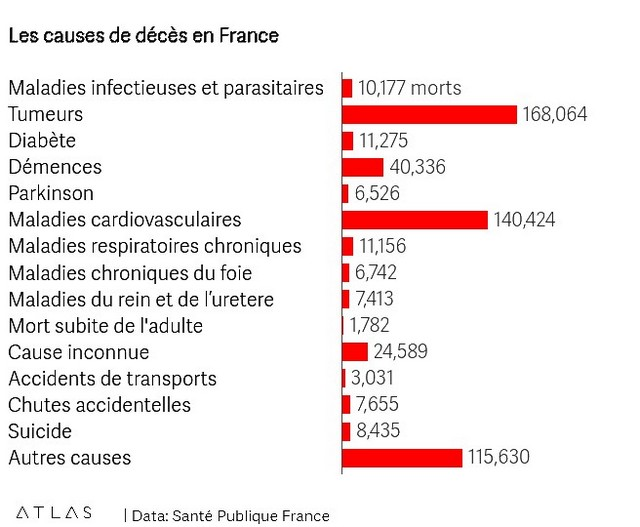 Causes décès France