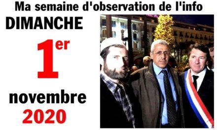 "Ma semaine d'observation de l'info (1<sup class=""ordinal"">er</sup> novembre 2020)"