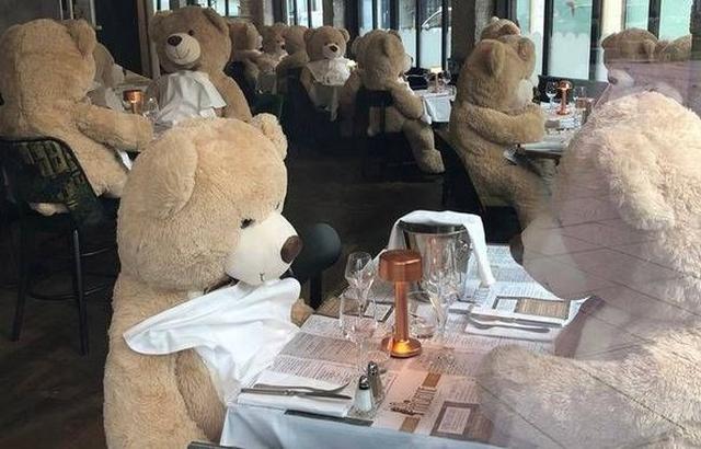 Bertrand Saint-Yves - Restaurant ours peluche - Rennes
