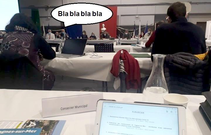 Conseil municipal - Cagnes-sur-Mer -10 décembre 2020