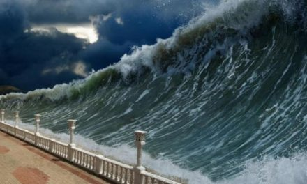 Alerte! Un tsunami s'approche de laCôte!