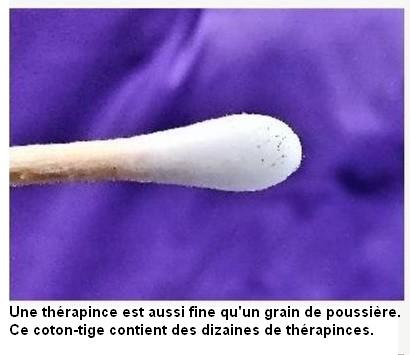 Thérapince coton-tige