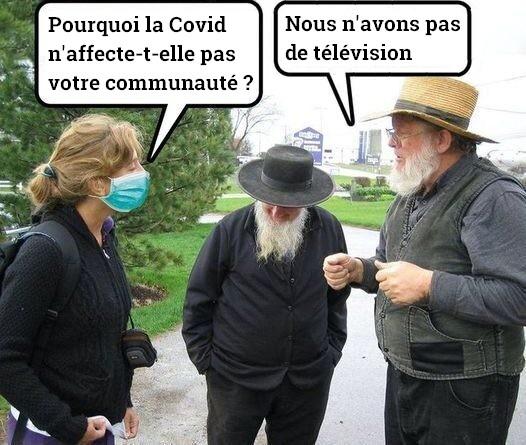Amish et Covid