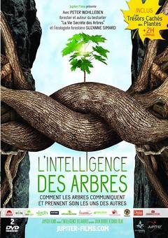 Intelligence des arbres